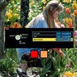 panasonic pt-ae4000 color management