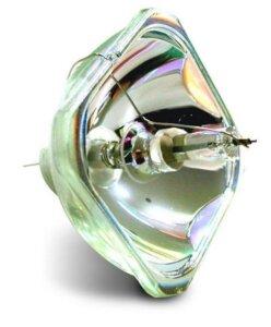 E-TORL---Full-lamp